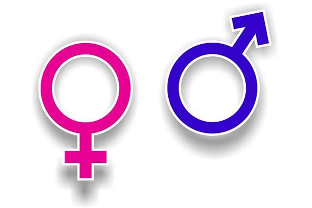 Plan de Igualdad de Oportunidades de Mujeres y Hombres 2014 – 2018